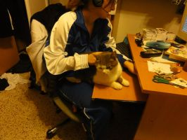 cats and tecnology 3 by Tedah