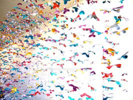 Multicolored butterflies by Drew315