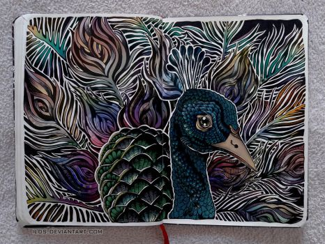 .Peacock by iLDS