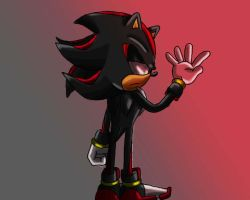 who am i , shadow by SonicForTheWin1