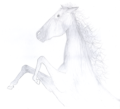 Rearing Horse by tinyangel
