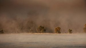 Foggy morning on the Danube by Csipesz