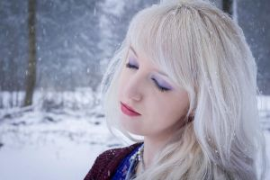 One winter day - stock by Liancary-Stock