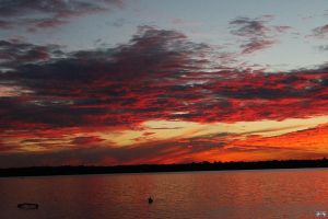 Fall Sunset Series #92 by LifeThroughALens84
