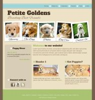 Golden Petite Website (Concept) by fireproofgfx