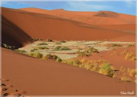 The white clay bowl Sossusvlei by KlaraDrielle