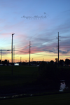 Wires by LenSpirations