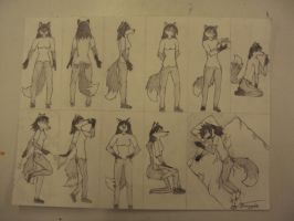 Anthro Fox Positions by Wolfchill13