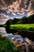in reflection III by theoden06