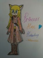 ~Re-Draw~ .:Han Hedgehog with Bio:. by Valkyrie01325