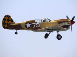 Curtiss P-40N Takeoff by shelbs2