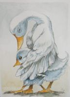 ACEO - Little duck by sanguigna