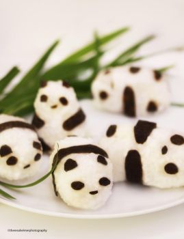 Panda Rice Balls Stuffed with Adzuki Bean Paste by theresahelmer