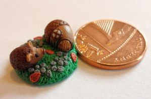 An acorn pixie house and a nosey hedgehog by Stefimoose