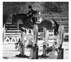 4 faults :edited: by zippostock
