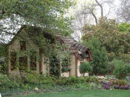Cottage in the trees-1 by pcoppolo46