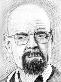 Walter White by LCNarwhal