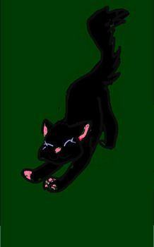 Hollyleaf by Rusted-Wolf