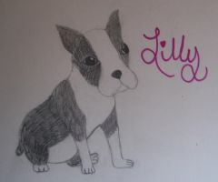 Lilly by larkawolf2009