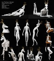 Ascker - ball-jointed doll: full view and posing by scargeear