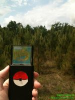 Poke Gadget in Viridian Forest by nimaruichi
