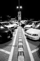 Day 35: Lined up by umerr2000