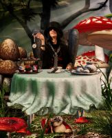 Tea Party in Wonderland by carbonella