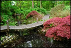 BG Japanese Garden by Eirian-stock