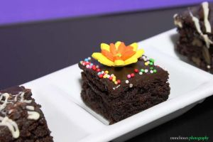Nutty Brownie 2 by munchinees