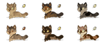 Adoptables Wolves (closed now) by mydlas