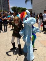 Rainbow Dash Fursuit  and Link Cosplay by ABlackSpiritWolf