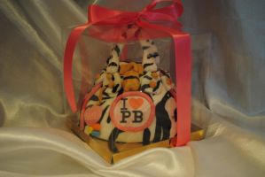 Gift boxed Pauls Boutique by starry-design-studio