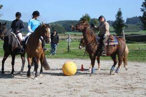 Horse football! by RvS-RiverineStables