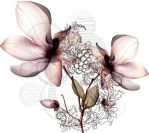 orchid by neslirawles