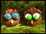 owl cookies by ruda-kun