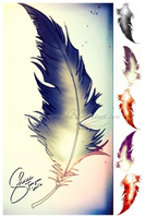 Feather by effinfabulous