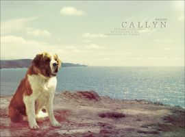 callyn by renderedsublime