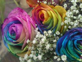 Rainbow Rose by FunkySockzLover