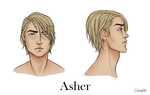 Asher Ref by Clavelle