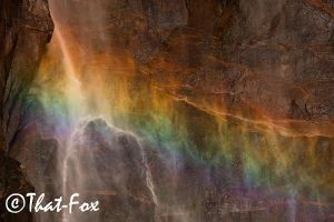 Wonders of colors by that-fox