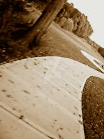 Sepia Path by Catsie95