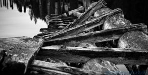 Old and Weathered Logs by TheUniphotoghrpher