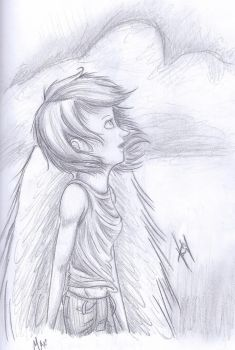 Contest Entry: Maximum Ride by blindbandit5