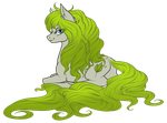 Flora by Haventide