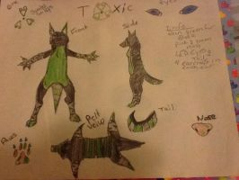 Toxicwolfys new ref sheet made by me by shockmyworld12