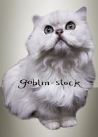 White Cat_cutout_2 by GoblinStock