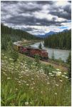 Canadian Pacific Railway by od1e