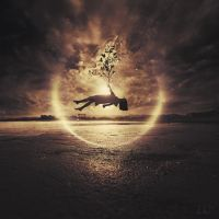 Seeds Of Life by 3mmI