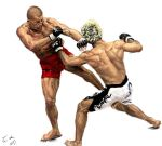 Two UFC fighters by vegas9879