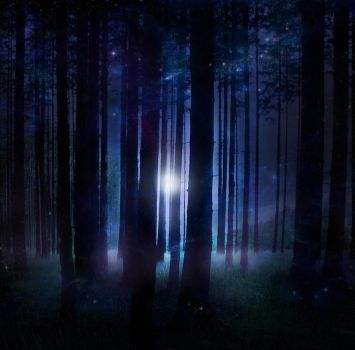 Magical Forest STOCK by wyldraven